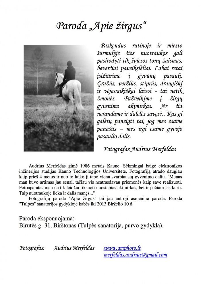 Paroda apie zirgus copy