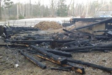 Pelekonių kaime sudegė vyras ir gyvuliai