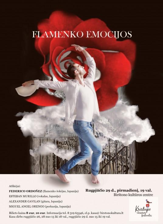 Federico Ordonez flamenko