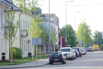 Brundzos gatvėje jau žaliuoja klevai