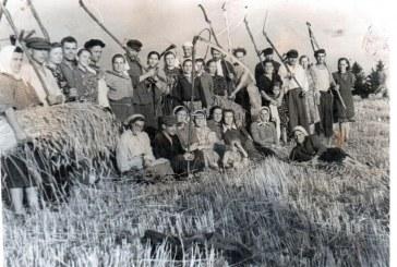 Jiezno kraštas sovietinės savivaldos metais – 1950-1962 m. (I)