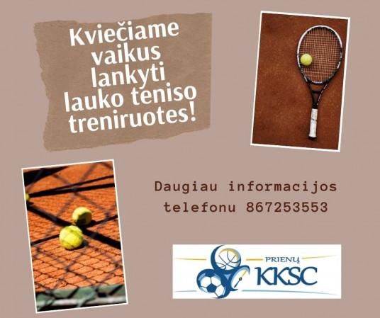 Informacija telefonu 831960053