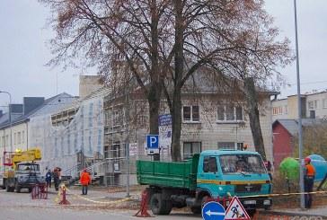 J. Brundzos gatvėje krito paskutiniai seni medžiai