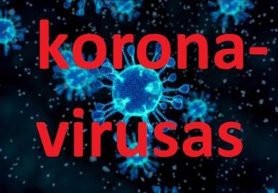 koronavirusas-5e4571654003e-392x272