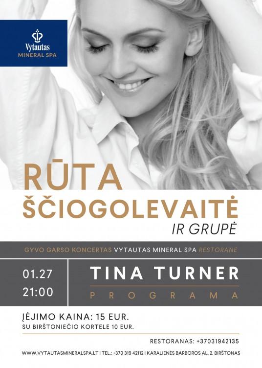 plakatas Tina Turner A5