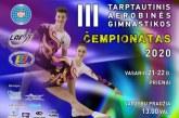 III tarptautinis aerobikos gimnastikos čempionatas
