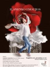 Flamenko emocijos Birštono KC