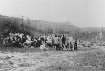 Žydų egzekucijos vieta Prienuose – viso krašto žydų žudynių vieta