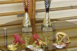 R.M. Ermošenkos stalo teniso taurės varžybos Veiveriuose (kvitrina.com ir Eglės Dambrauskaitės nuotraukos)