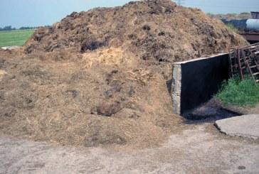 Už aplinkosauginius pažeidimus – 23 administracinių pažeidimų protokolai