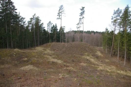 Naujasodzio piliakalnis II is R_Aruno Strazdo nuotrauka