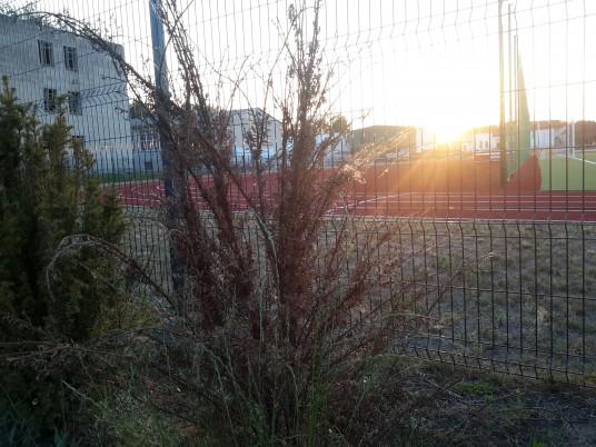 Stadionas 2019-06_4