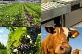 Lietuvos žemės ūkio tarybos Atviras laiškas šalies vadovams