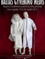 Reginos Katkienės lėlių paroda Prienų krašto muziejuje