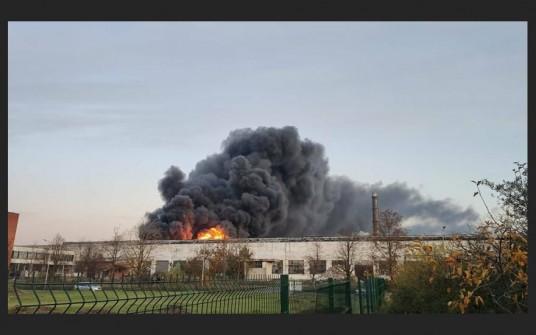 milziniskas-gaisras-alytuje-82538965