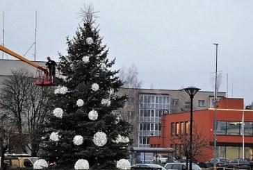 Prienų seniūnija tęsiatradiciją – prašo padovanoti Kalėdinęeglę