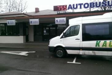 Kaunas-Birštonas maršruto autobusai užsuks ir į viršutinį Birštoną