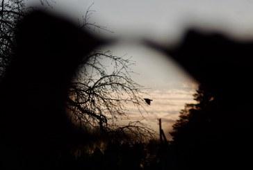 Žvilgsniai per fotoobjektyvą