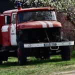 IMGP0559