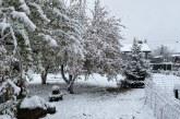 Gegužės sniegas (Fotoakimirkos)