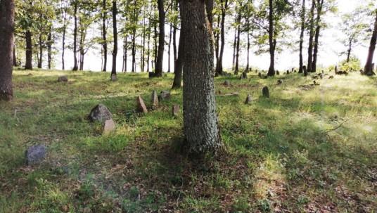 Stakliškių žydų kapinės