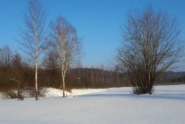 Žiemos šventės praskaidrina karantiną