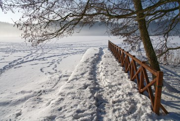 Nueinančios žiemos ženklai (Fotoakimirkos)