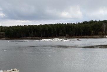 Nuo kovo 15 d. žuvų neršto ir migracijos laikotarpiu – draudimas tvarkyti vandens telkinius