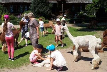 """Vasaros stovykla """"Vaikystės kaleidoskopas"""": kelionės, pažinimas ir dovanos"""
