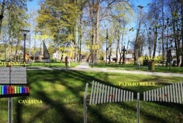 """Gyventojų balsavimas lėmė: savivaldybės lėšos bus skirtos """"Skambančio miesto"""" ir """"Balbieriškio miestelio centrinio skvero sutvarkymo"""" projektams"""