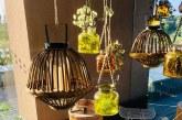 """Kavinė """"Saulės terasa"""" su nuostabia panorama į Nemuną"""